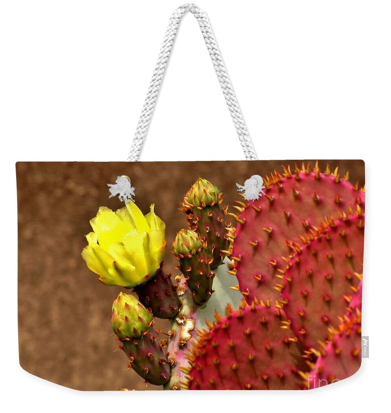 Plant Weekender Tote Bag featuring the photograph Santa Rita Cactus by Marilyn Smith