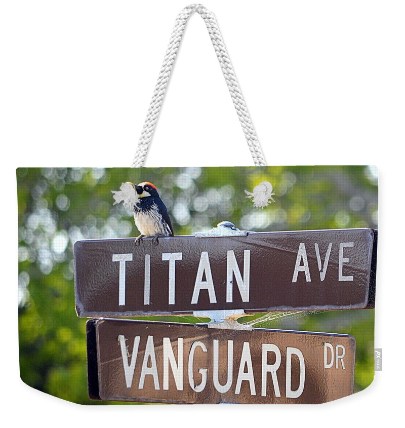 Birds Weekender Tote Bag featuring the photograph Saw This Bird At The Corner Of by AJ Schibig