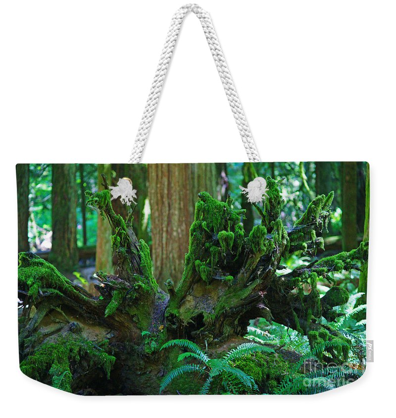 Forests Weekender Tote Bag featuring the photograph Sc3278-13 by Randy Harris