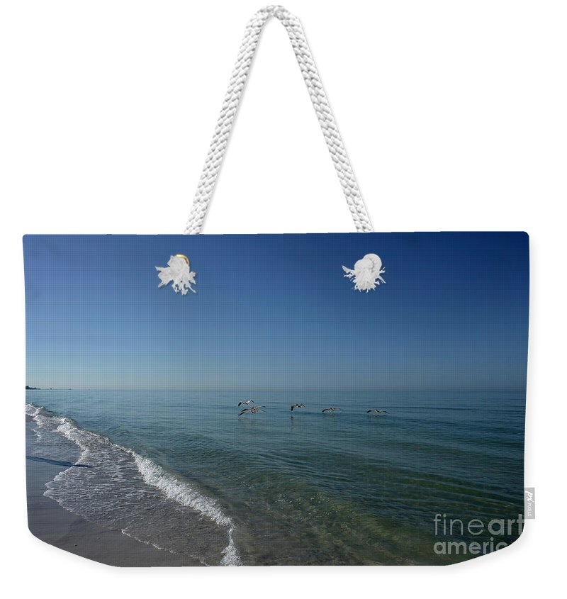 Beach Weekender Tote Bag featuring the photograph Scouting 5111 by Terri Winkler