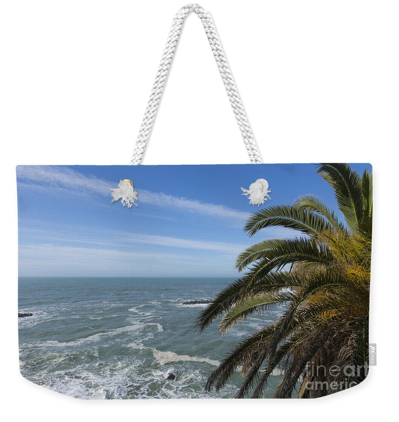 Sea Weekender Tote Bag featuring the photograph Sea And Palm Tree by Mats Silvan