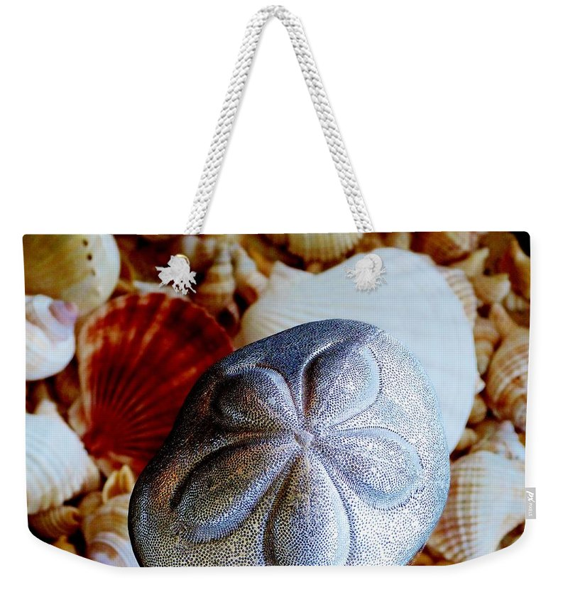 Color Weekender Tote Bag featuring the photograph Sea Biscuit by Amar Sheow