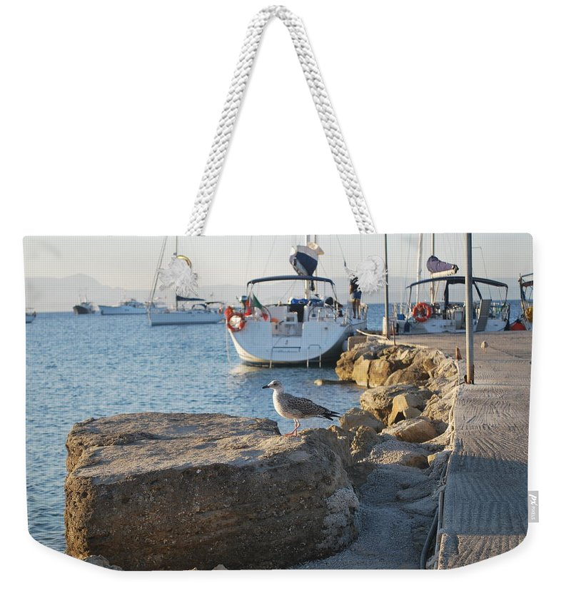 Sea Gull Weekender Tote Bag featuring the photograph Sea Gull 1 by George Katechis