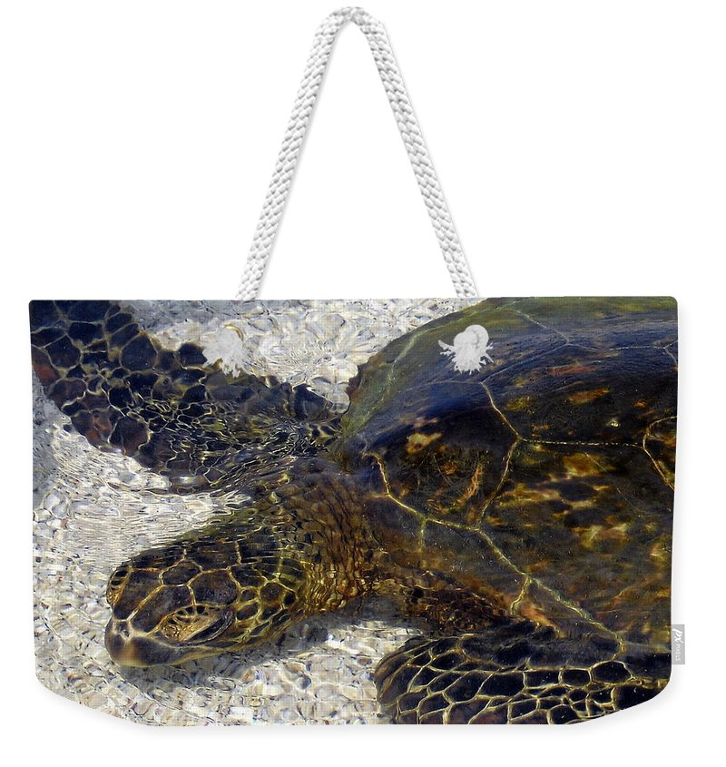 Turtle Weekender Tote Bag featuring the photograph Sea Life by Athala Bruckner