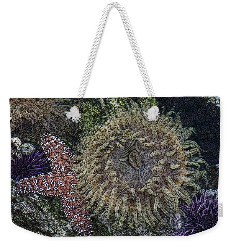Sea Urchins Weekender Tote Bag featuring the digital art Sea Life by Ernie Echols