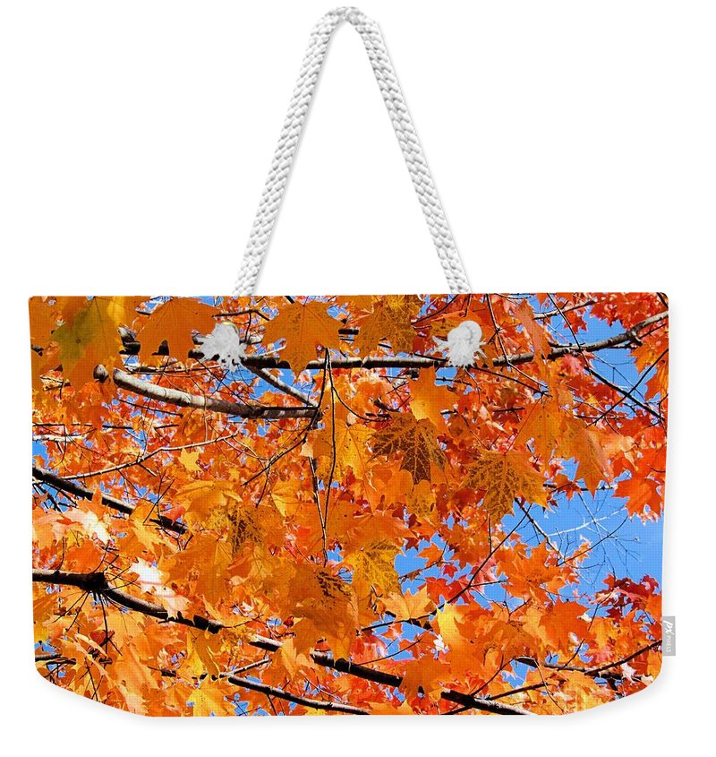 Leaves Weekender Tote Bag featuring the photograph Sea Of Orange And Blue by Elizabeth Dow