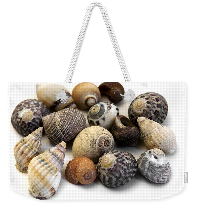 White Background Weekender Tote Bag featuring the photograph Sea Shells by Fabrizio Troiani