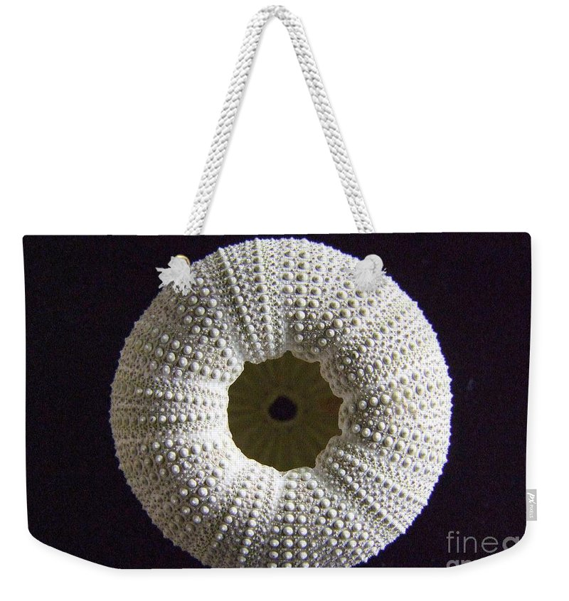 White Weekender Tote Bag featuring the photograph Sea Urchin by Mary Deal