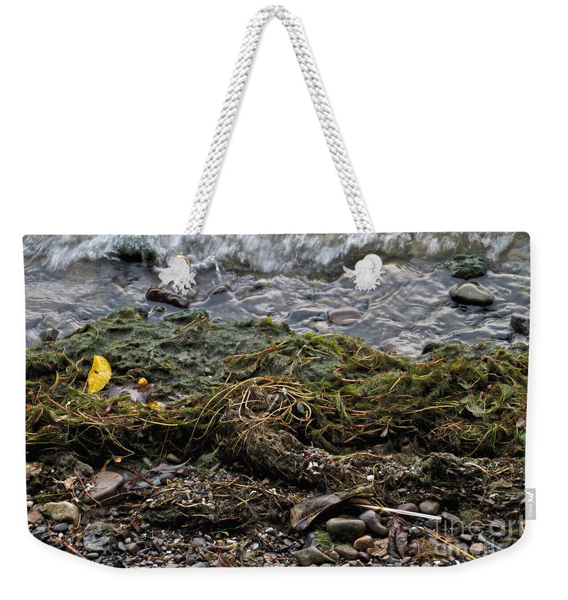 Green Weekender Tote Bag featuring the photograph Sea Weed by William Norton