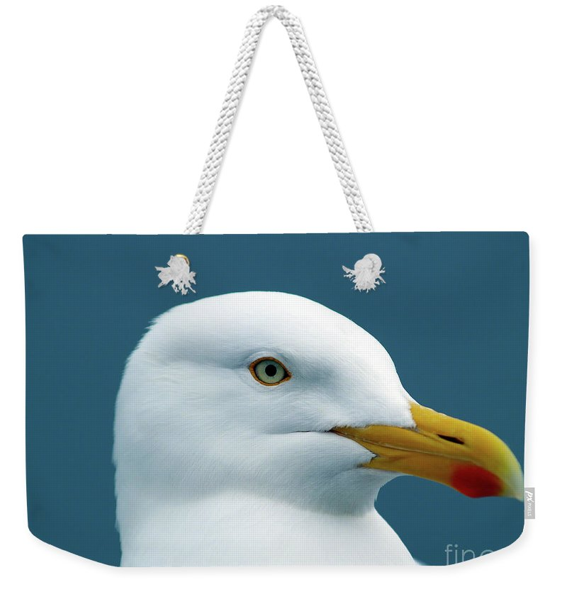 Fine Art Print Weekender Tote Bag featuring the photograph Seagull I by Patricia Griffin Brett