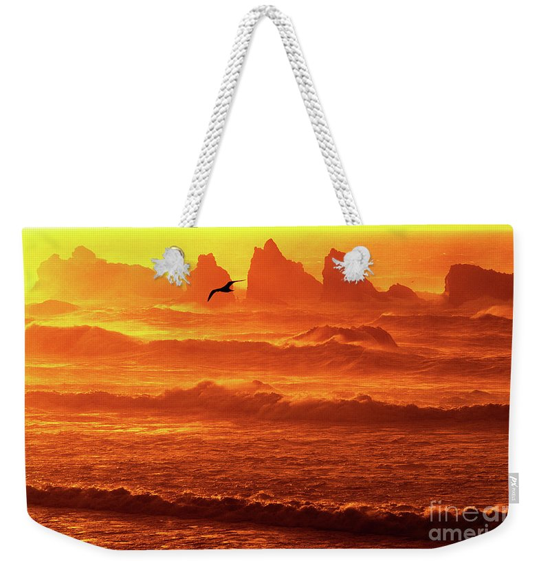 Oregon Weekender Tote Bag featuring the photograph Seagull Soaring Over The Surf At Sunset Oregon Coast by Dave Welling