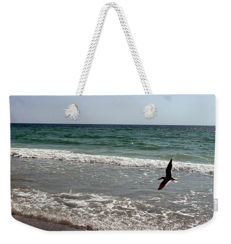 Bird Weekender Tote Bag featuring the photograph Searching by Barb Montanye Meseroll