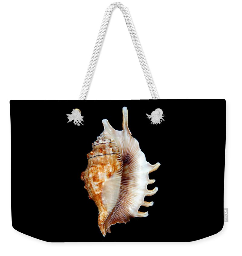 Shell Weekender Tote Bag featuring the photograph Seashell Lambis Digitata by Jennie Marie Schell