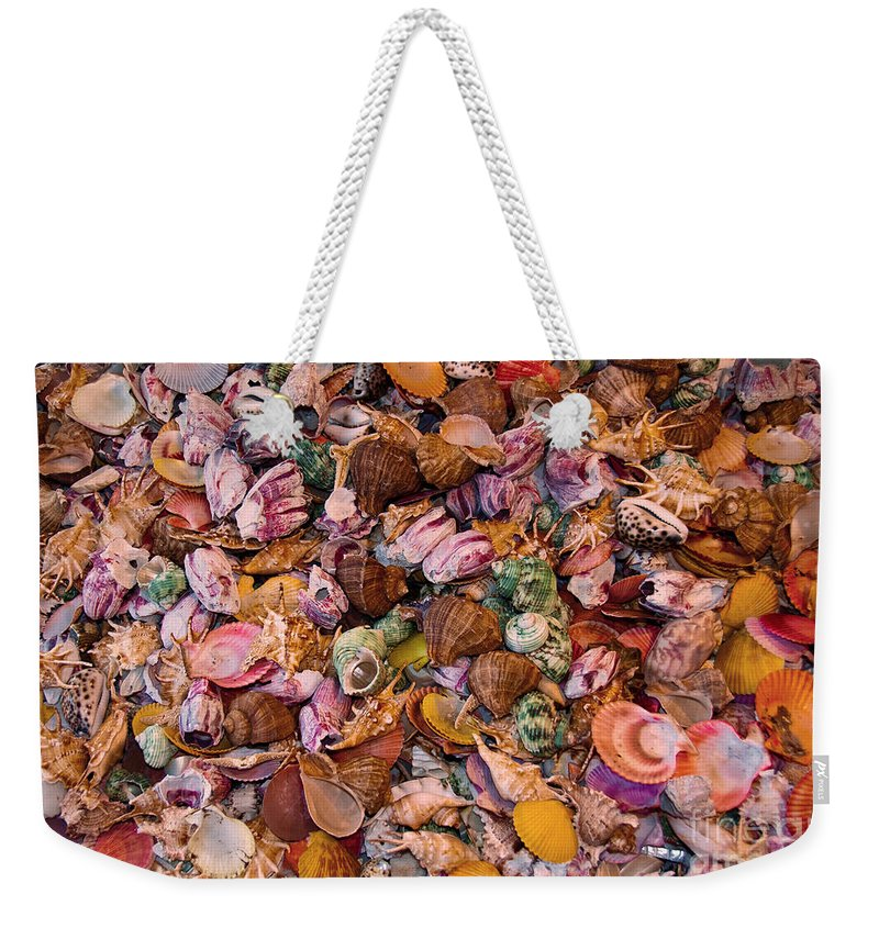 Seashells Weekender Tote Bag featuring the photograph Seashells by Anthony Sacco