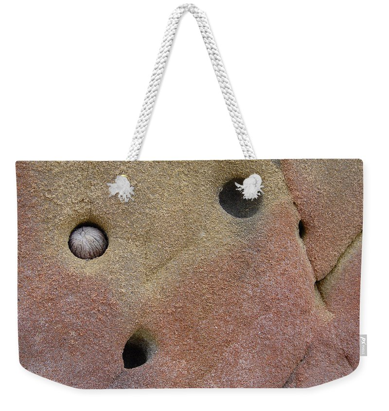 Nature Weekender Tote Bag featuring the photograph Seed In Rock by Noa Mohlabane
