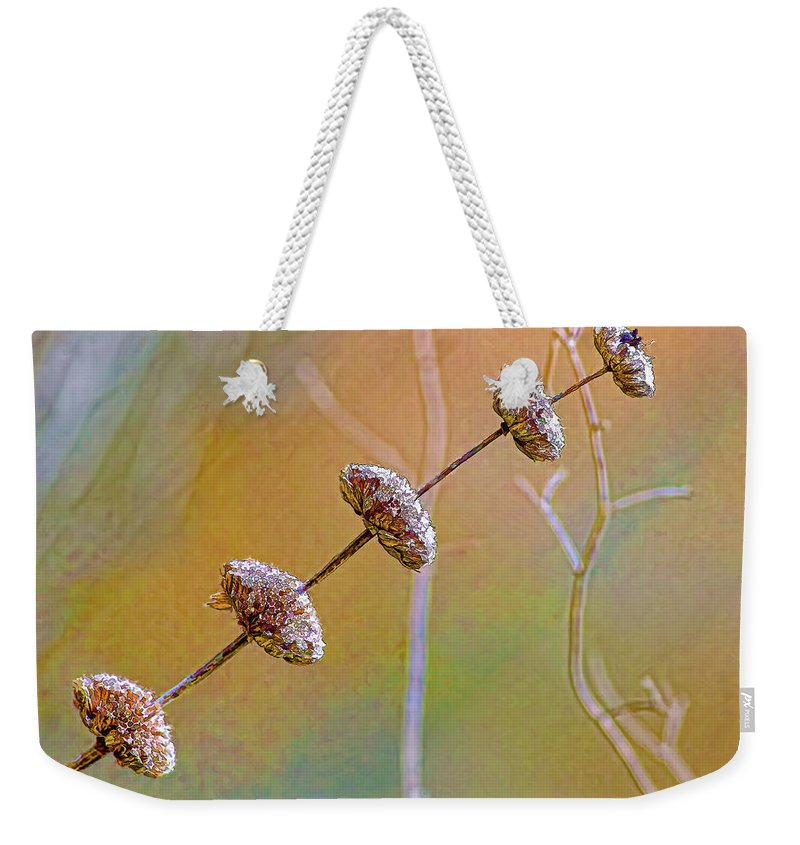 Seed Pod Weekender Tote Bag featuring the photograph Seed Pod Pagoda by Gary Holmes