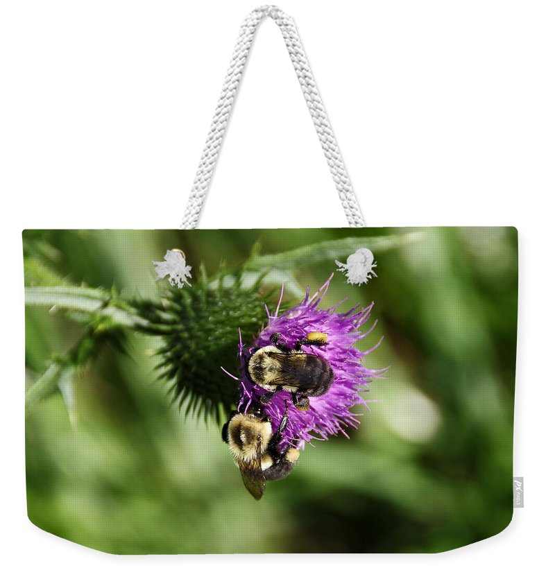Bees Weekender Tote Bag featuring the photograph Seeing Double by Deborah Bowie