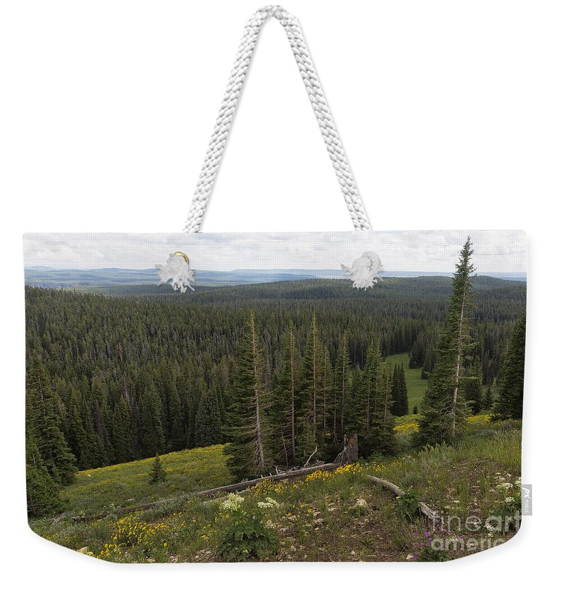 Yellowstone Weekender Tote Bag featuring the photograph Seeing Forever - Yellowstone by Belinda Greb