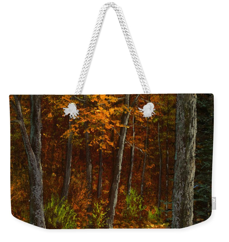 Landscape Weekender Tote Bag featuring the painting Seldom Used by Frank Wilson