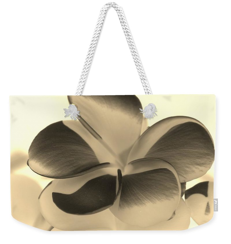 Flowers Weekender Tote Bag featuring the photograph Sepia Bloom Negative by Rob Hans