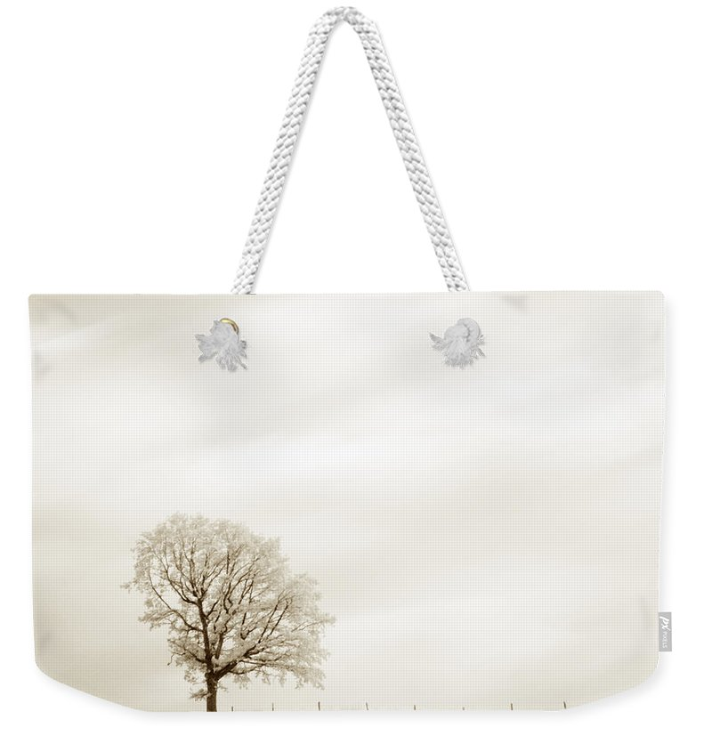 Autumn Weekender Tote Bag featuring the photograph Sepia Square Diptych Tree 13-0747 Set 1 Of 2 by U Schade