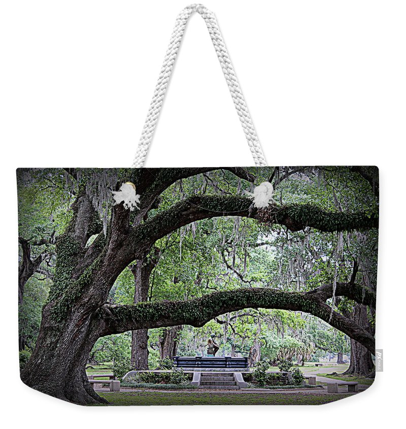 Serenity Weekender Tote Bag featuring the photograph Serenity by Beth Vincent