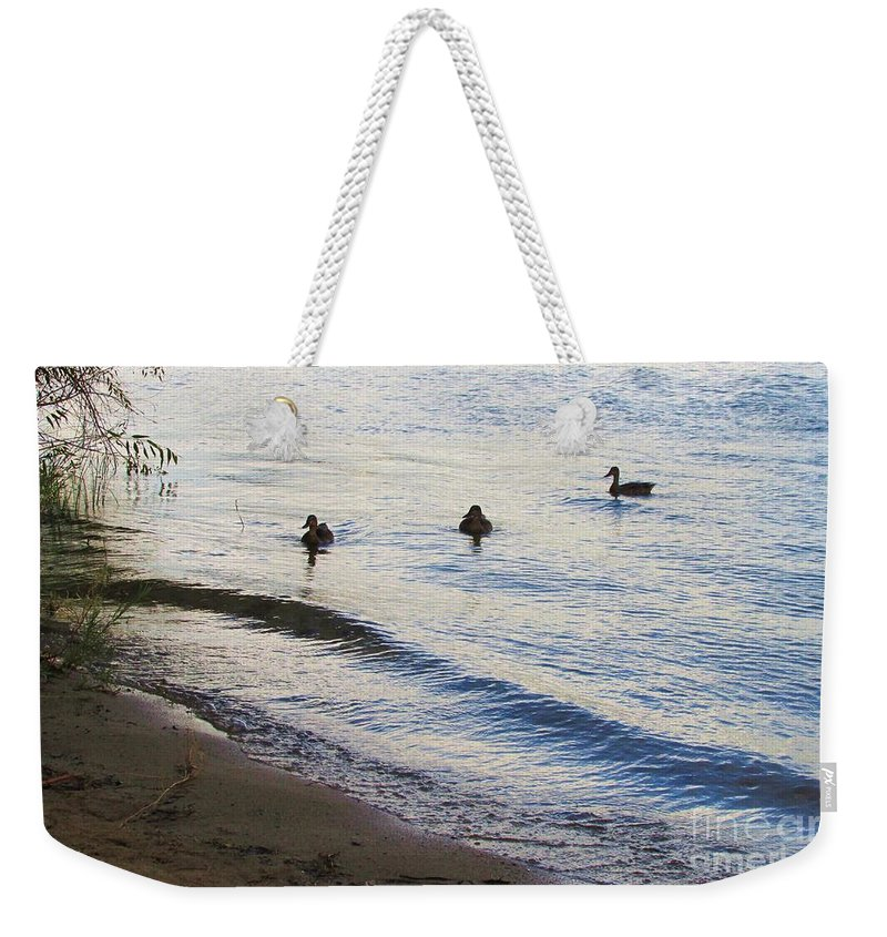 Ducks Weekender Tote Bag featuring the photograph Serenity by Jewell McChesney
