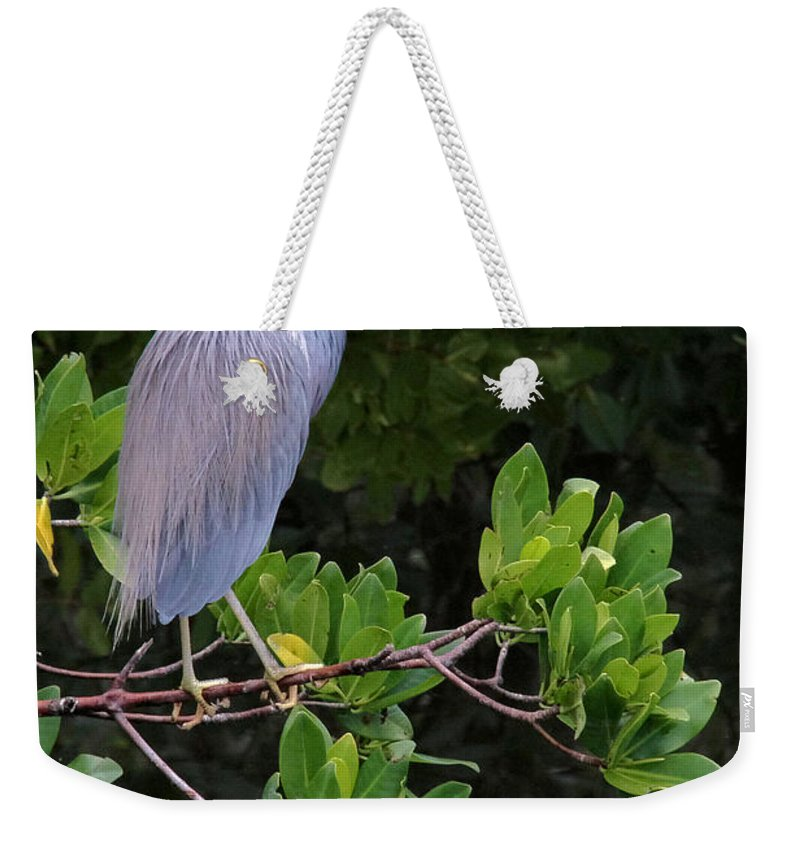 Blue Weekender Tote Bag featuring the photograph Shades Of Blue And Green by Doris Potter