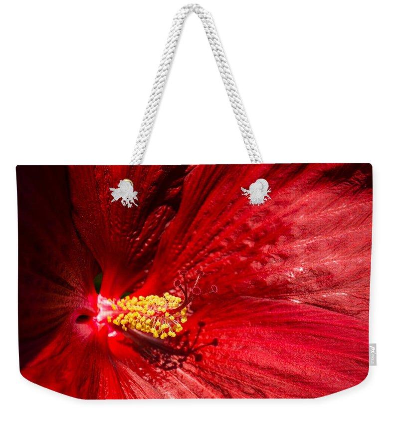 Georgia Mizuleva Weekender Tote Bag featuring the photograph Shades Of Red by Georgia Mizuleva
