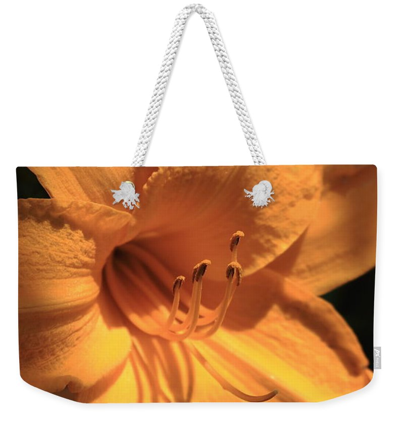 Flower Weekender Tote Bag featuring the photograph Day Lily Shadows by Reid Callaway