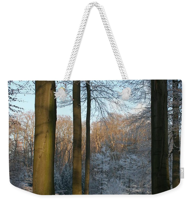 Sunlight Weekender Tote Bag featuring the photograph Light And Shadows In Wintertime by Christiane Schulze Art And Photography