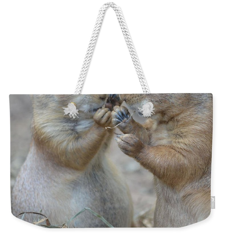Share Weekender Tote Bag featuring the photograph Sharing Is Caring by Richard Bryce and Family
