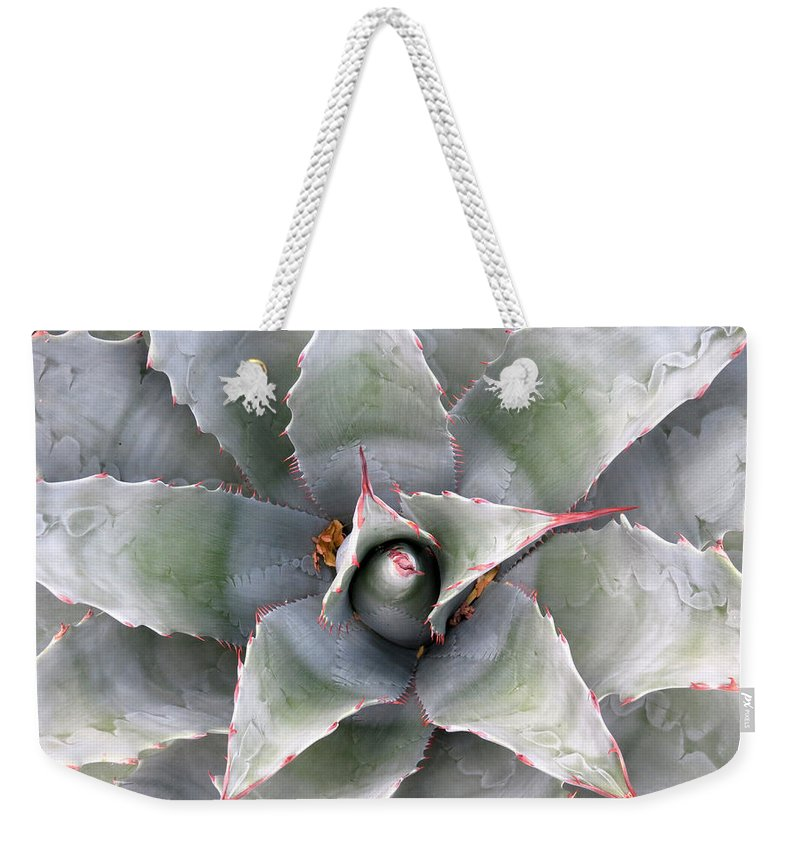Cactus Weekender Tote Bag featuring the photograph Sharply Circular by Laurel Powell