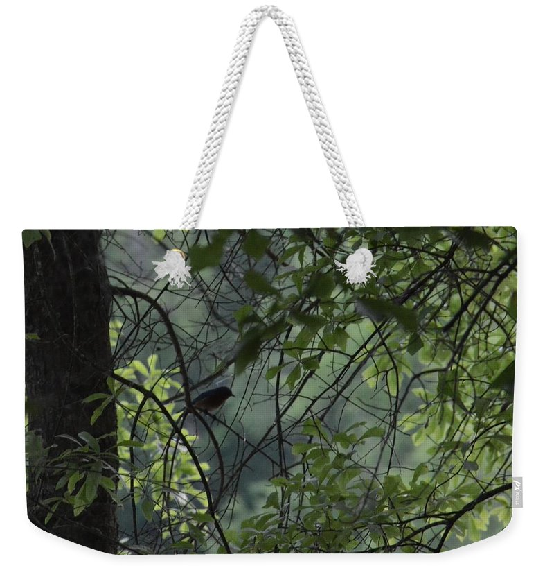 Sheltered From The Rain Weekender Tote Bag featuring the photograph Sheltered From The Rain by Maria Urso