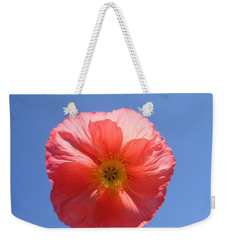 Poppy Weekender Tote Bag featuring the photograph Shine Down On Me by Donna Blackhall