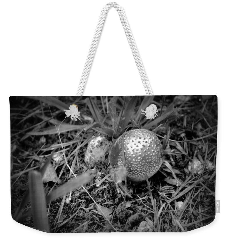 Mushroom Weekender Tote Bag featuring the photograph Shiny Mushroom by Tara Potts