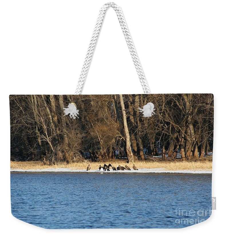 Outdoors Weekender Tote Bag featuring the photograph Shoreline Meeting by Susan Herber
