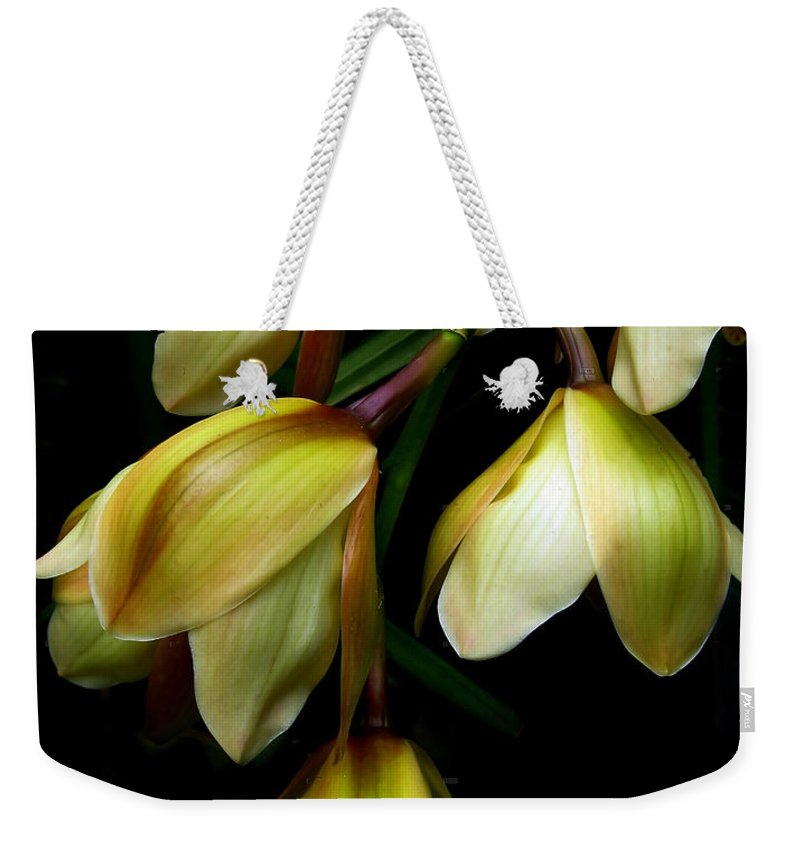 Flower Weekender Tote Bag featuring the photograph Shy by Jessica Jenney