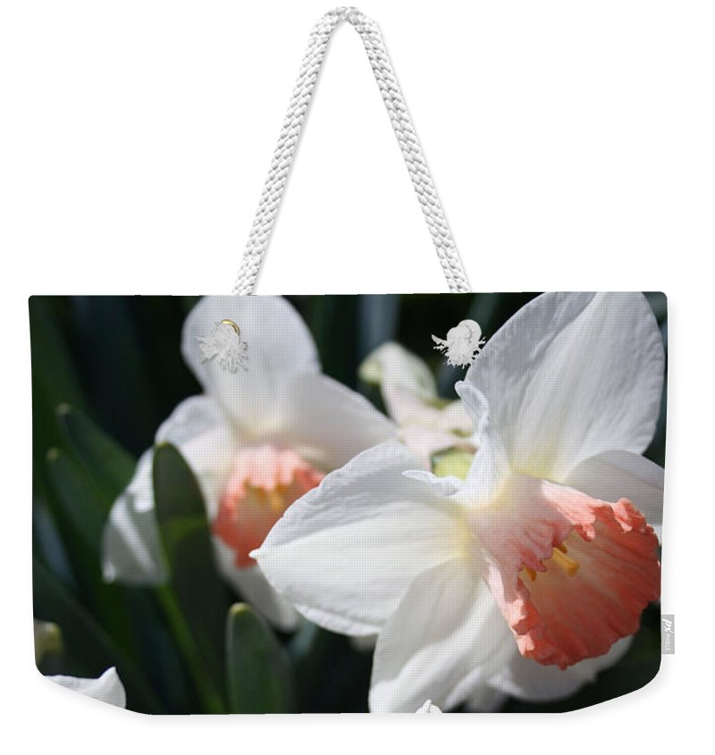 Flowers Weekender Tote Bag featuring the photograph Signs Of Spring by Kay Novy