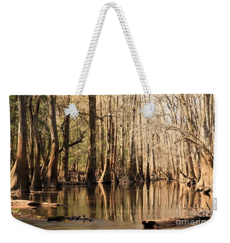 Congaree National Park Weekender Tote Bag featuring the photograph Silent Reflections by Adam Jewell