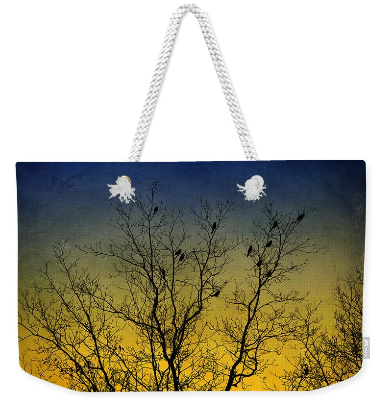 Bird Weekender Tote Bag featuring the mixed media Silhouette Birds Sequel by Christina Rollo