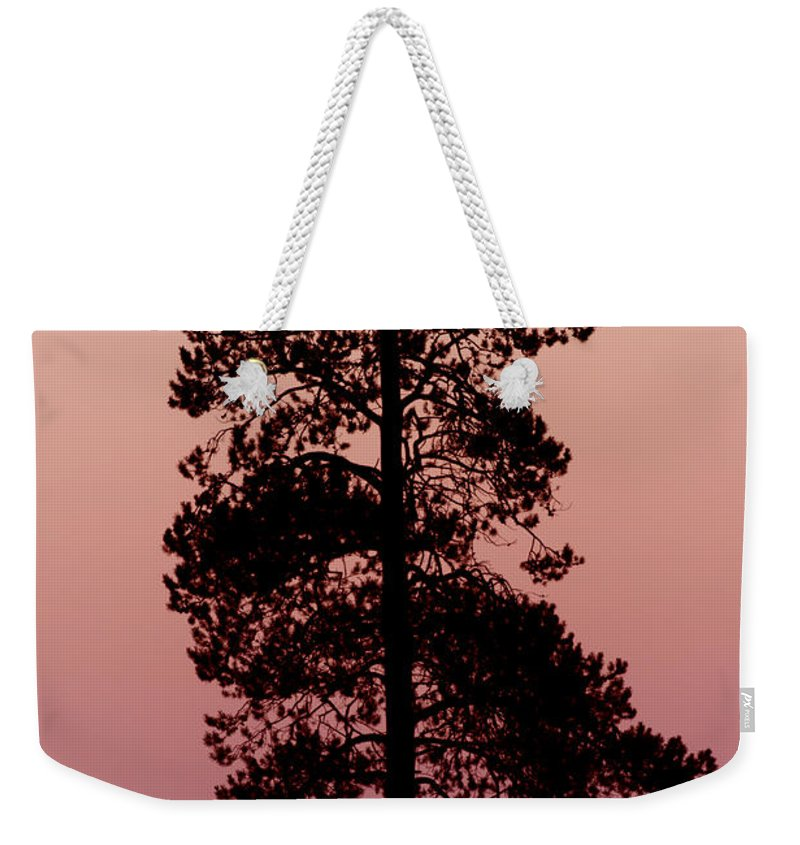Tree Weekender Tote Bag featuring the photograph Silhouette Tree At Sunrise by Gary Langley