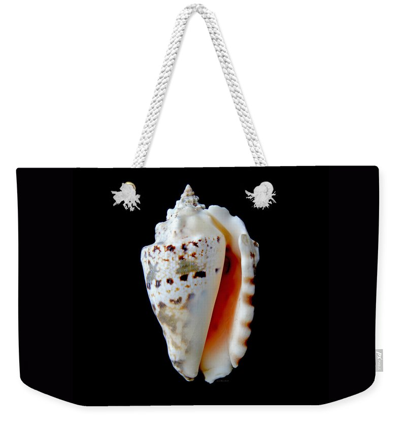 Shell Weekender Tote Bag featuring the photograph Silver Conch Seashell by Jennie Marie Schell