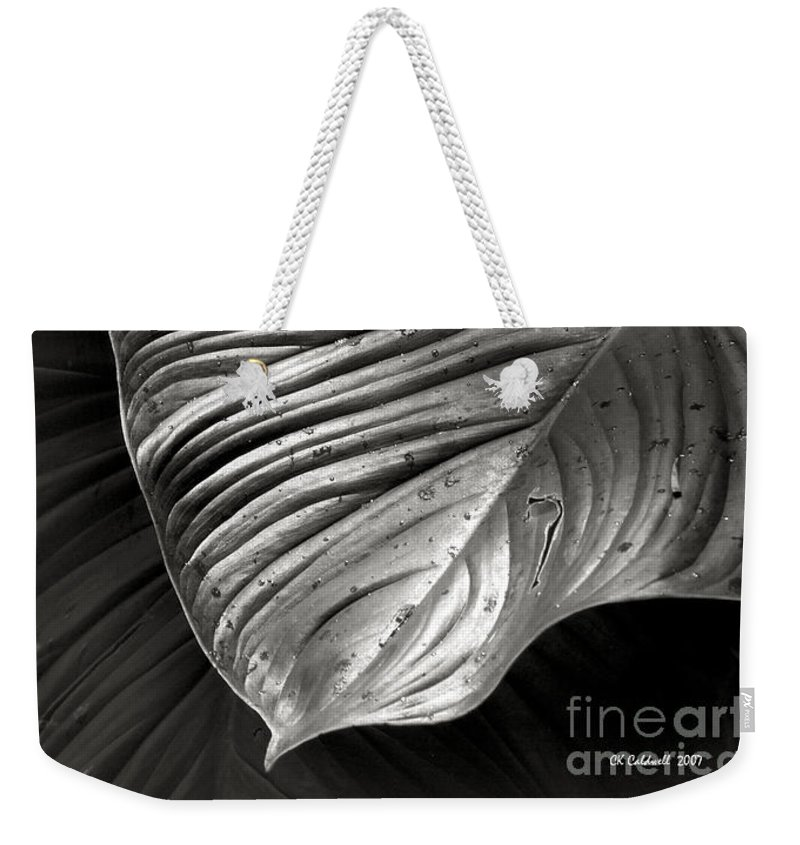 Leaf Weekender Tote Bag featuring the photograph Silvertone Leaf by CK Caldwell