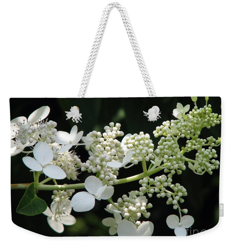 Hydrangea Weekender Tote Bag featuring the photograph Simply by Amanda Barcon