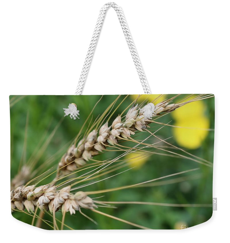 Dried Grass Weekender Tote Bag featuring the photograph Simply Dried Grass by Smilin Eyes Treasures