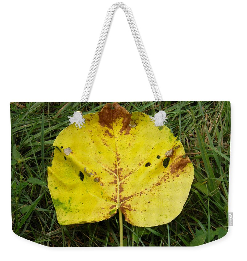 Leaf Weekender Tote Bag featuring the photograph Single Leaf by Nick Kirby
