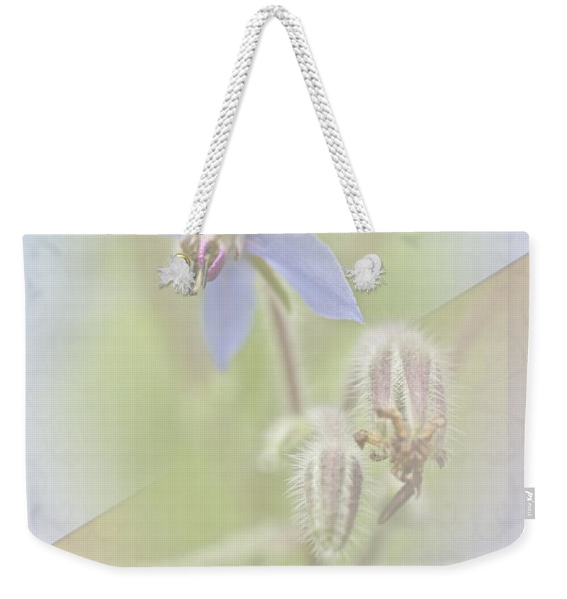 Greeting Weekender Tote Bag featuring the photograph Sister Birthday Greeting Card - Borage - Borage Officinalis by Mother Nature
