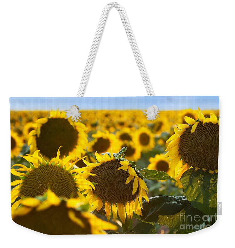 Flowers Weekender Tote Bag featuring the photograph Sisters by Jim Garrison