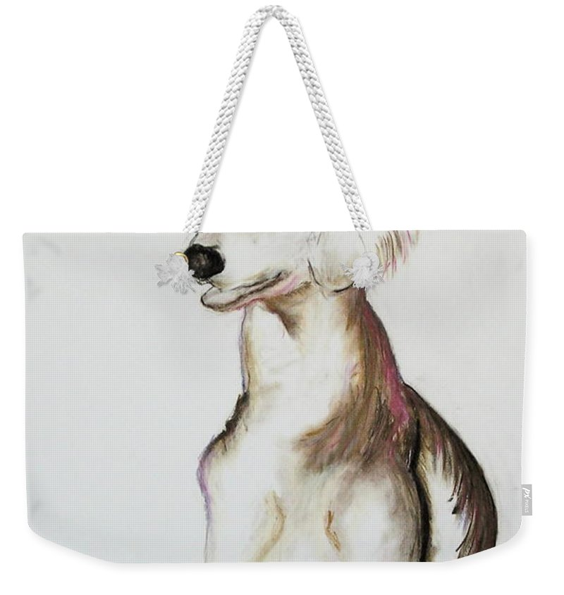 Saluki Weekender Tote Bag featuring the drawing Sitting Pretty by Cori Solomon
